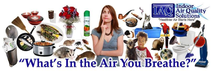 Indoor AIr Quality Solutions IAQS